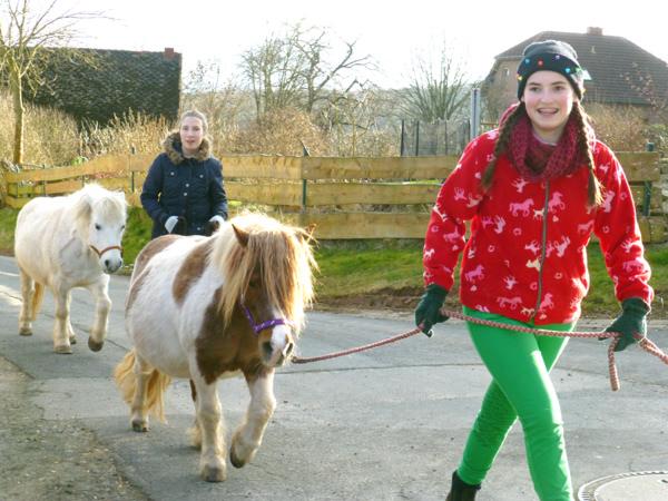 Ausflug mit den Ponys