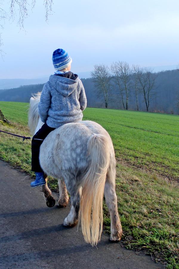 Förderpädagogische und reittherapeutische Betreuung von Kindern Hardegsen Göttingen